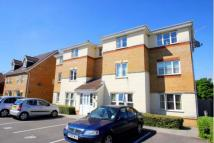 1 bed Flat in Clos Springfield...