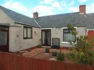 2 bed Terraced Bungalow in JASPER AVENUE, SEAHAM...