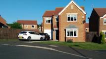4 bedroom Detached property for sale in ASPEN GROVE, SEAHAM...