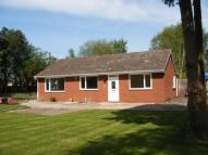 Detached Bungalow to rent in Wemsbrook Road, Wem, SY4
