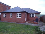Detached Bungalow to rent in Coton Lodge  Coton Hill...