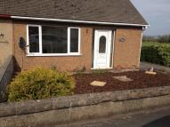 2 bedroom Semi-Detached Bungalow to rent in Faenol Avenue, Abergele...