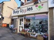 Commercial Property in Busy Lizzies...