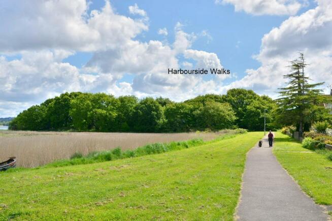 Harbourside walks