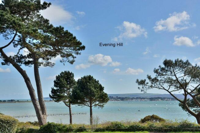 Evening Hill