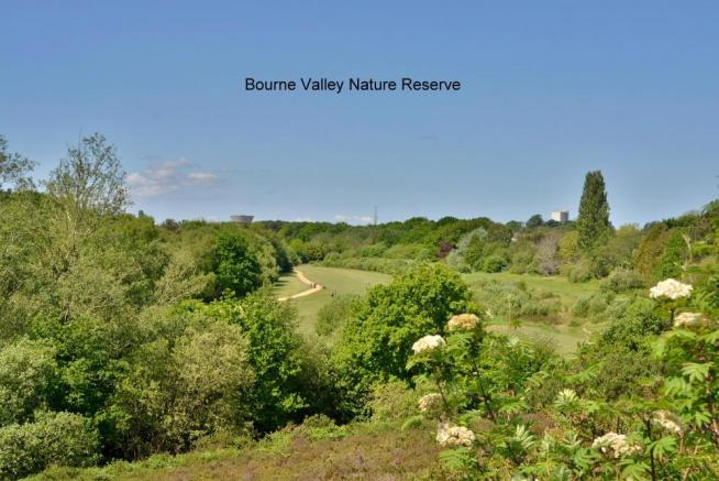 Bourne Valley Nature