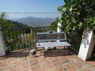 Bench with views