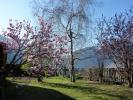 property for sale in Rhone Alps, Savoie, Aigueblanche