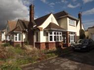 Detached home in Thorpe Bay