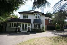 Detached house in New Forest Lane, Chigwell