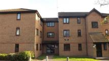 Flat to rent in Linnet Way, Purfleet
