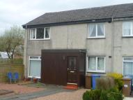 Laburnum Road Flat to rent