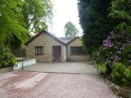 Detached home to rent in The Lane, Dullatur...