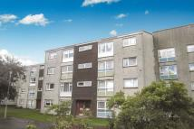 George Court Flat to rent