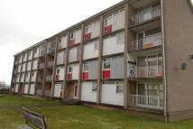 Flat to rent in Denholm Green...