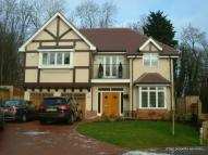 Large Double Bedroom with Ensuite and extra Room To Let Park Grove House Share
