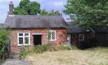Bungalow to rent in Mackworth, Derby