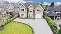 Detached property for sale in Hazel Grove, Orpington
