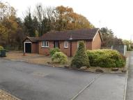 Detached property to rent in Sunningdale Close...