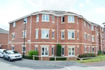 Flat to rent in Jenkinson Grove...