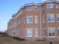 Jenkinson Grove  Flat to rent