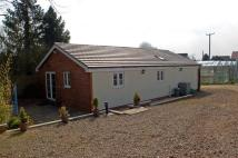 Bungalow to rent in The Scarr, Newent