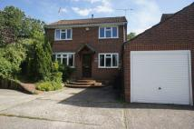 Detached home for sale in Salisbury Close, Alton...