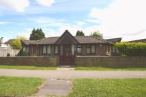 4 bed Bungalow for sale in Geales Crescent, Alton...