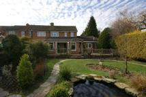 3 bedroom semi detached home for sale in Whitedown Lane, Alton...