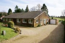 Detached Bungalow in Five Ash Road, Medstead...