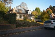 Detached property to rent in Lingdale, Southampton