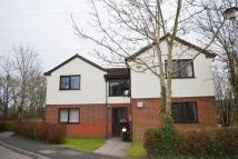 1 bedroom Studio flat to rent in Elliot Close...