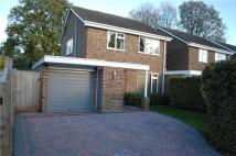 Detached home in Bolters Road, Horley...