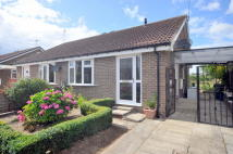 Semi-Detached Bungalow to rent in FAIRFIELD, Thirsk, YO7