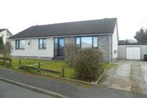 4 bed Semi-Detached Bungalow to rent in Wolfgill Road, Dumfries...