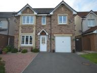 4 bed Detached property to rent in Caulstran Road, Dumfries...