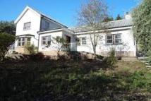 Detached property to rent in Wyseby Side...