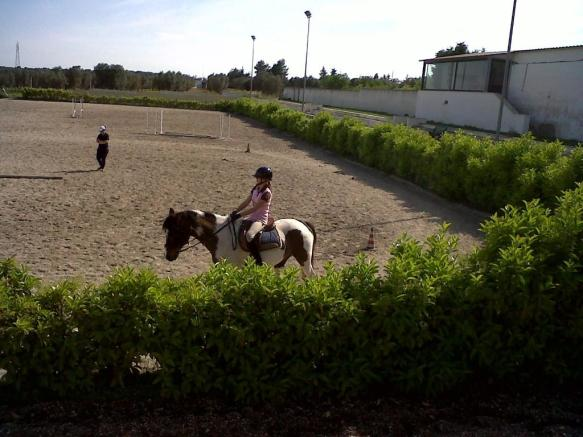 Nearby Horseriding