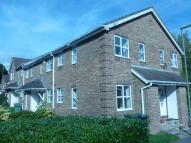 Cluster House to rent in Rosebanks