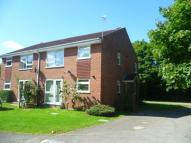Apartment to rent in Chineham