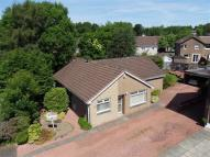 Detached Bungalow for sale in Barbeth Place...