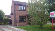 2 bed semi detached house to rent in Betony Close, Scunthorpe...