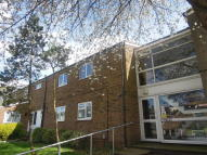 Flat to rent in Lonsdale Road, Stevenage...
