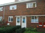 Phelp Street property to rent