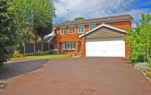 Detached house to rent in 46a Wrottesley Road...