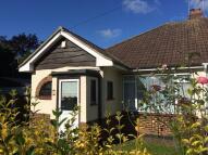 2 bed Semi-Detached Bungalow in Norwood Drive, Benfleet...