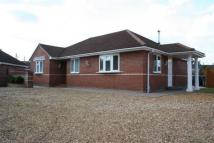 Bungalow to rent in Fen Road, Cambridge...