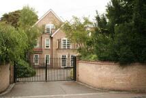 Flat to rent in Glebe Road, Cambridge