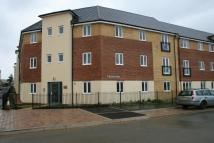 2 bed Flat in Braymere, Hampton Centre...