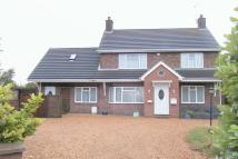 4 bedroom Detached property to rent in Crowland Road, Eye...